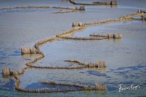 Fish traps Kosi lakes